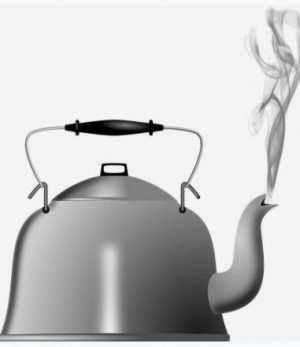 steam and your hair using steam kettle