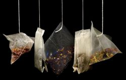teas bags used as rinse for baldness and women